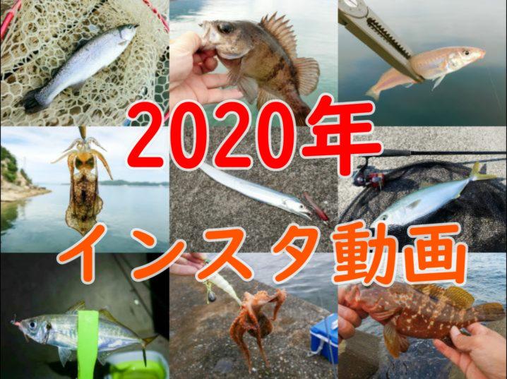 2020年のライトルアーフィッシング動画(インスタグラム)一覧