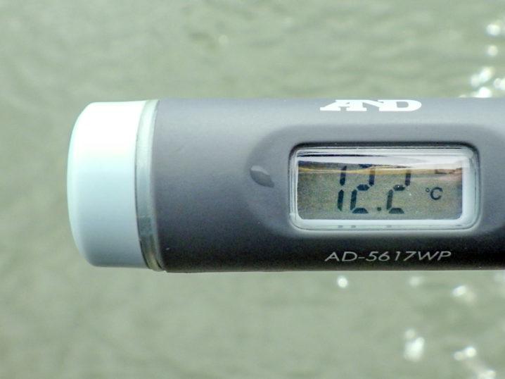 水温は約12.2度