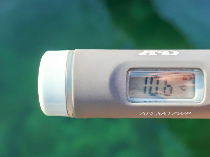 海水温は約10.6度
