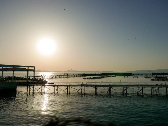 【小島養漁場】に到着