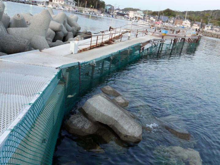 小島養漁場Dポイント周辺