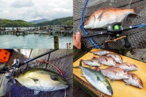 海上釣り堀初心者がフィッシングレインボーでつ抜け!釣果と釣り方、釣れたエサを紹介