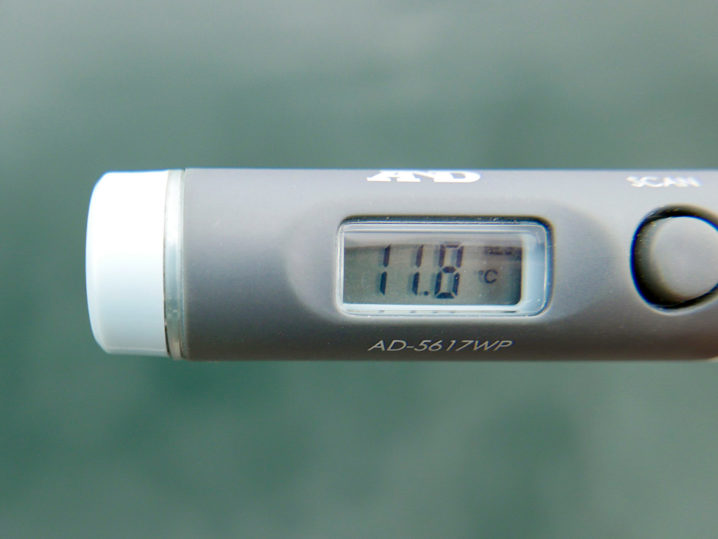海水温は約11.8度
