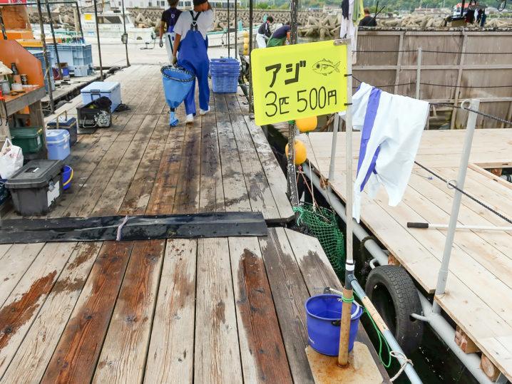 活きアジは筏の上で販売しています(3匹500円)