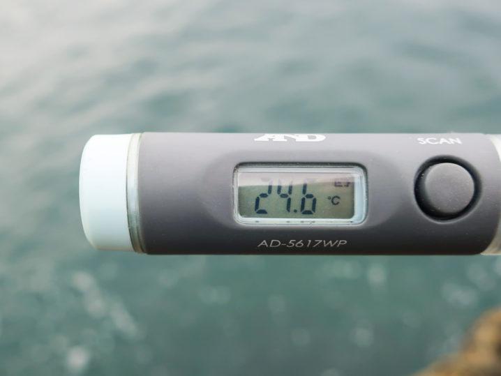 海水温は約24.6度
