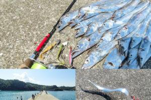 9月下旬和歌山湯浅一文字でタチウオ爆釣!真昼間でも釣れる釣り場とヒットルアーを紹介