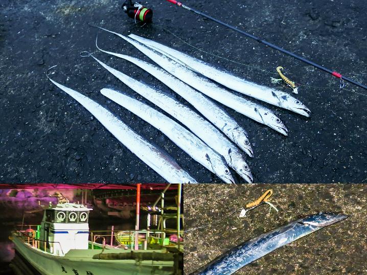 【釣行動画】9月上旬和歌山の水軒一文字でルアーでタチウオ釣り日記